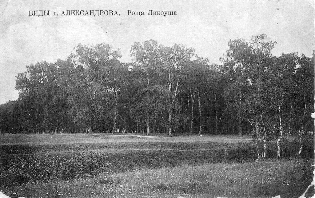 Alexandrov. Panorama of grove Likousha