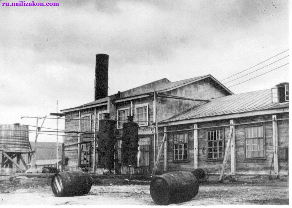 Anadyr. Building a fish plant, the beginning of the 30s