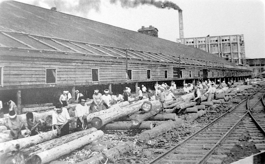 Dolinsk. Sanding logs at the paper mill