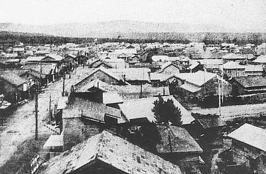 Dolinsk. Panorama of the city, 1920
