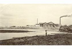 Naryan-Mar. Sawmill plant 'Stella Polare'