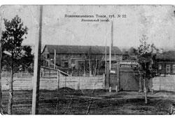 Novosibirsk. Sawmill plant