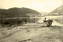 Petropavlovsk-Kamchatsky. Fishing herring in the harbor