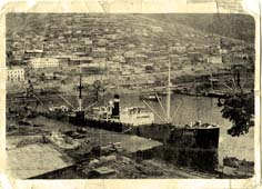 Petropavlovsk-Kamchatsky. Panorama of port