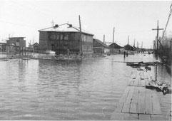 Tarko-Sale. Flood