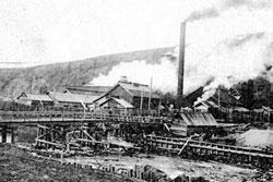 Tomari. Paper Mill