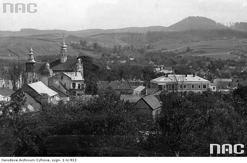 Dobromyl. Panorama of the city