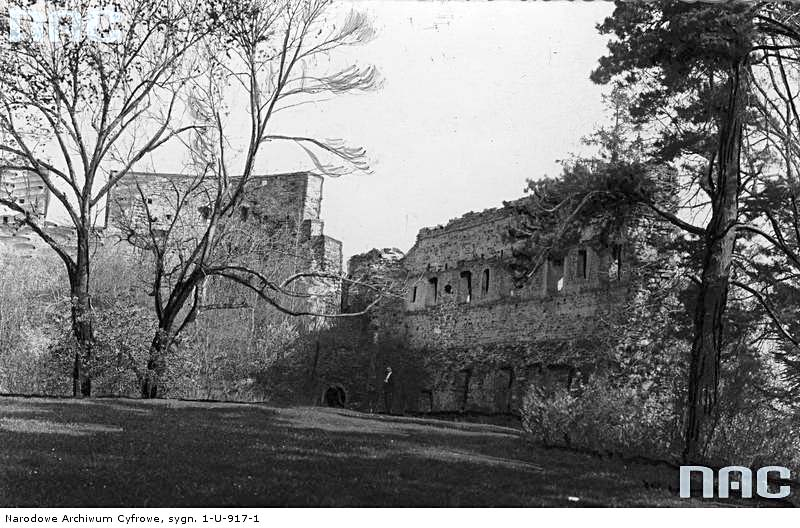 Dobromyl. Panorama of the ruins of the castle