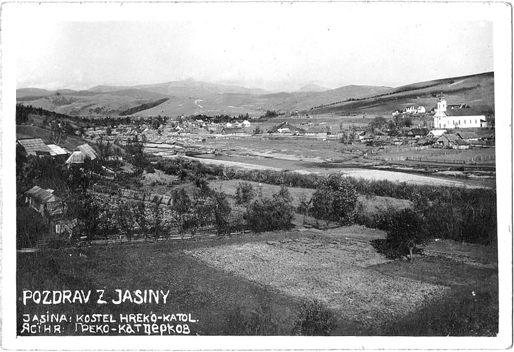 Yasinia. Panorama of the city