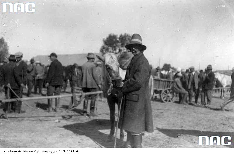 Zolochiv. The cattle market