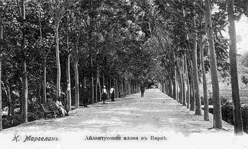 Fergana. Aylatusovaya alley in the park
