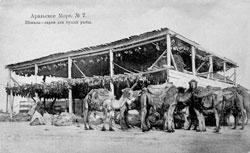 Aralsk. Veshala - sheds for drying fish
